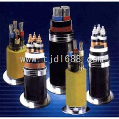 室外电话电缆HYA-50X2X0.7报价 薛经理,13131661216