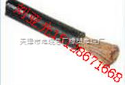 YCW YZW橡套绝缘电缆 2451 53(YZ )