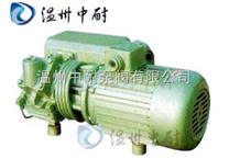 XD型直联式真空泵
