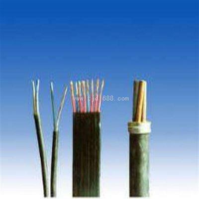煤矿用阻燃通信电缆MHYV,MHYV5*2*0.6电缆