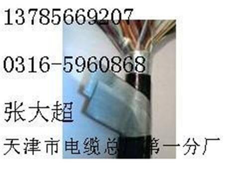 ZRC-HYA53电缆|ZRC-HYA53通信电缆