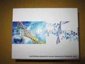 小鼠乙酰胆碱受体抗体试剂盒
