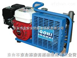 呼吸器冲气泵生产厂家