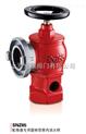 SNZ65加高旋转型室内消火栓