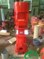立式多级消防泵产品概述