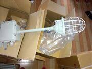 BCD防爆节能灯型号福州BCD-J45防爆螺旋节能灯价格