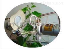 植物光合生理及环境 型号:SJN/PTM-48A库号:M145587