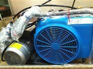 德国宝华呼吸器充气泵