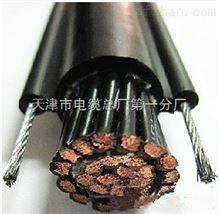 行车电缆(电动葫芦电缆) 1.0 1.5 0.75 2.5