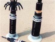 天联牌 KVV32;塑料绝缘控制电缆 报价