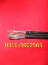 HYAC通信电缆(架空电话线