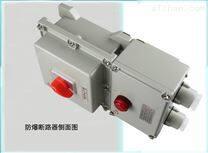 BLK52L-63/3带漏电保护防爆断路器