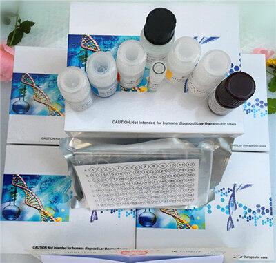 人P物质受体(SP-R)elisa试剂盒-上海常斤生物