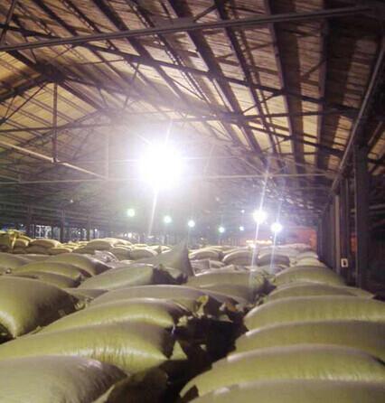 客户用在粮食仓库led防爆照明灯具实物图片