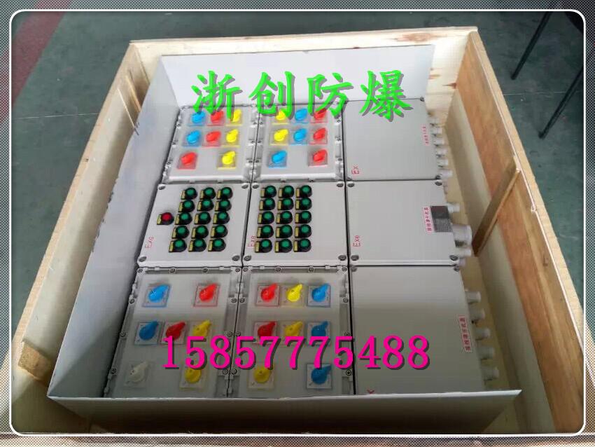 防爆照明(动力)配电箱采用复合型,模块结构,各回路可根据需要自由组装