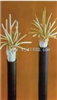 直销KVVP控制电缆KVVP铜芯屏蔽控制电缆
