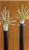 直销控制电缆线KVVP2-22铠装控制电缆线