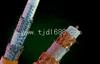 RVSP双绞屏蔽电缆 RVVSP双绞屏蔽电缆