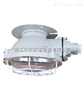 BXL-100BAX51-100防爆吸顶灯