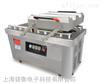 ZH-ZKJ-500/2双真空工作室包装机价格